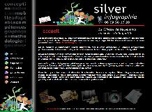 Silver Infographie